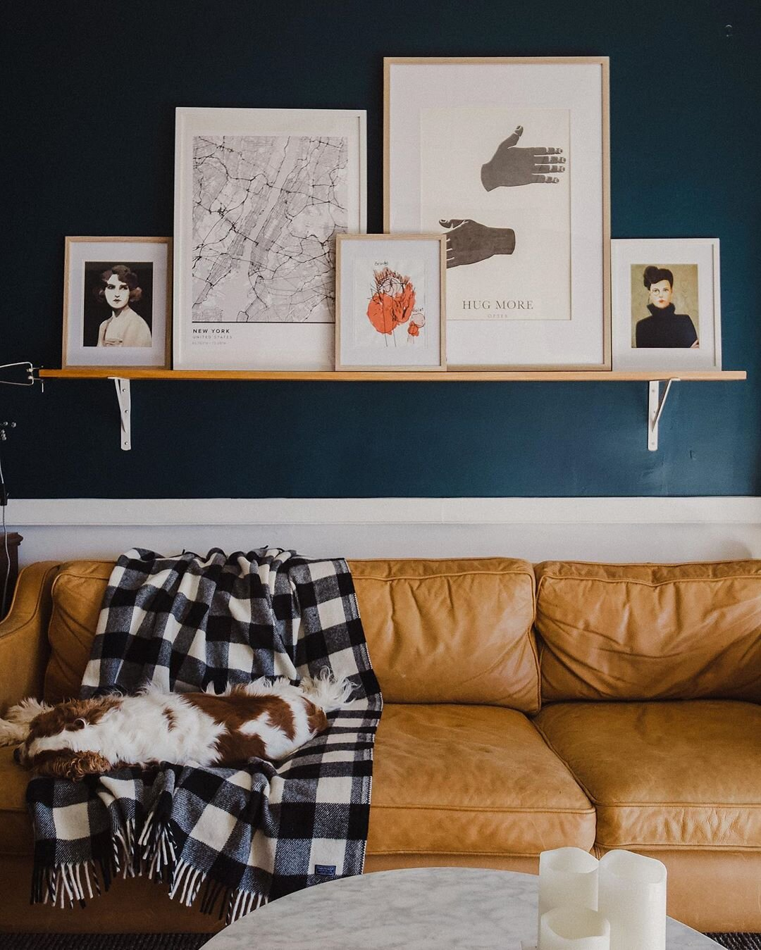 Pip's dog feeling quite at home on her couch. Source:  @theinsidecollective