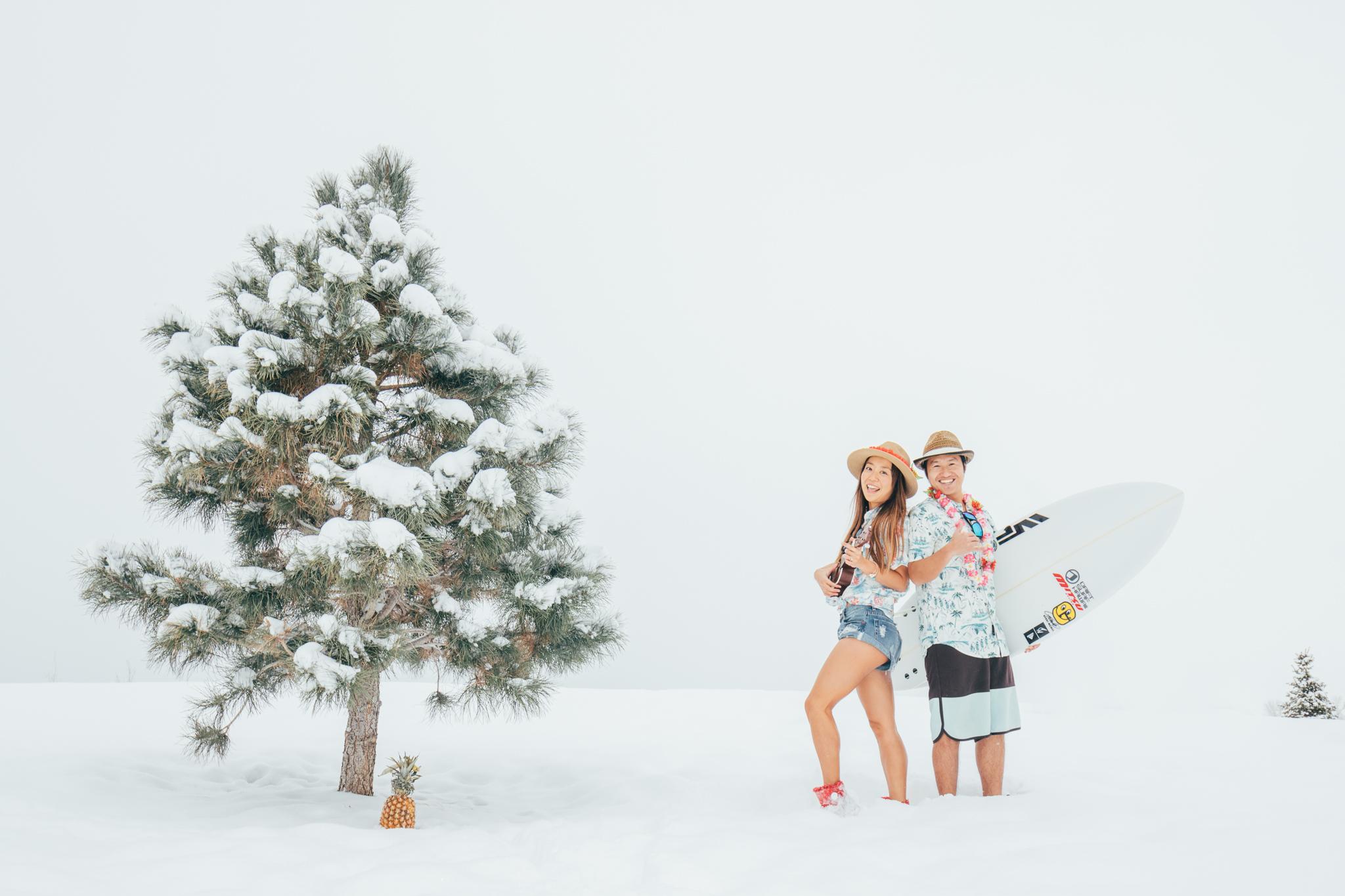 A Happy New Year everyone!!! Wishing you a bright 2017!  Aloha from Montana  明けましておめでとうございます!!  今年も皆様にとって、健康で明るくハッピーな年でありますように。  2017年もどうぞ宜しくお願いします!  Aloha  Takako