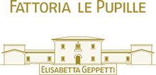 Logo_fp2.png