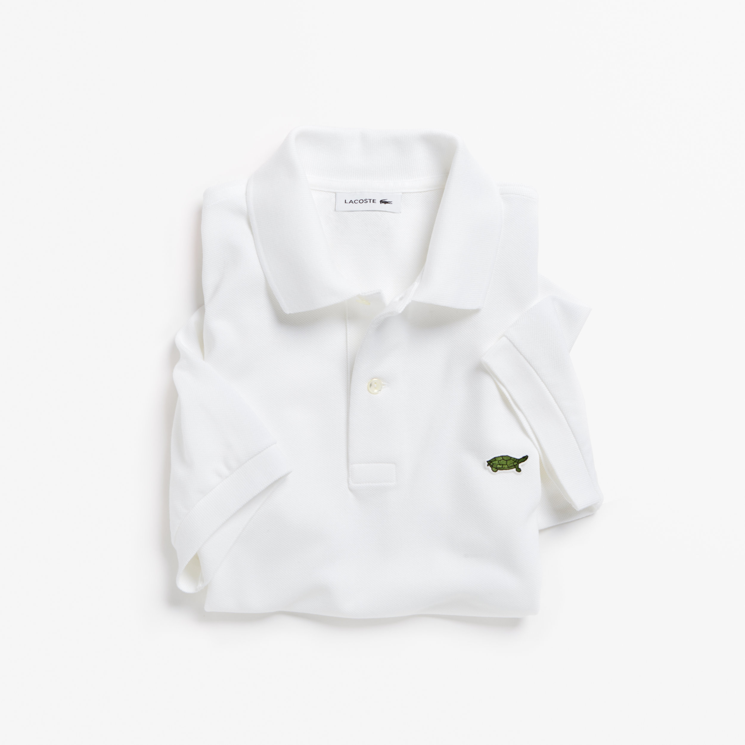 02. LACOSTE X SAVE OUR SPECIES (UICN)_THE BURMESE ROOFED TURTLE_PH4642.jpg