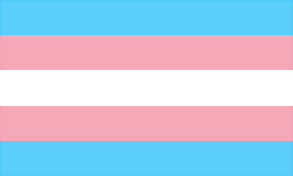 The Transgender Pride flag designed by Monica Helms in 1999.