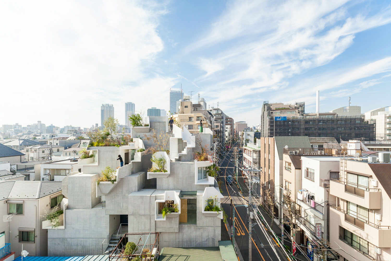 Tree-ness-House-Toshima-Japan-by-Akihisa-Hirata-Yellowtrace-01.jpg