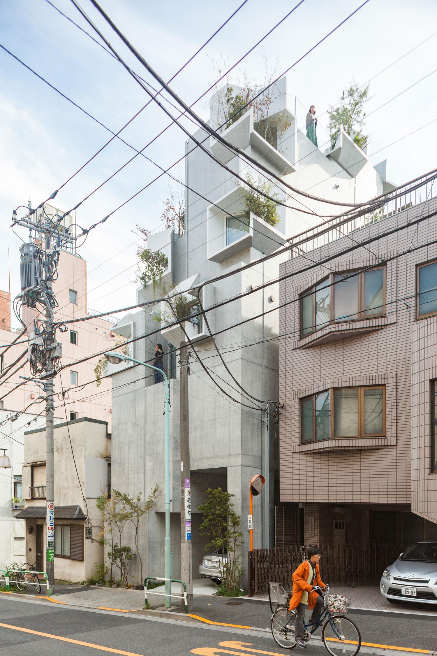 Tree-ness-House-Toshima-Japan-by-Akihisa-Hirata-Yellowtrace-03.jpg