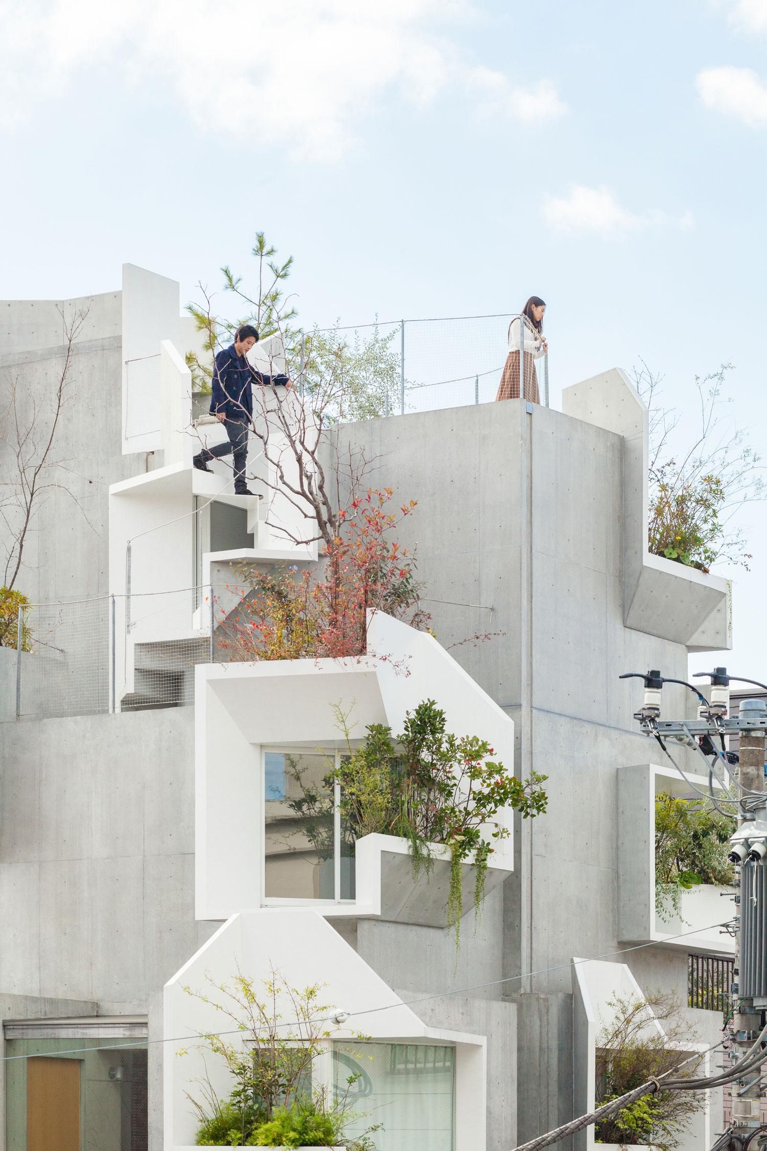 Tree-ness-House-Toshima-Japan-by-Akihisa-Hirata-Yellowtrace-04.jpg