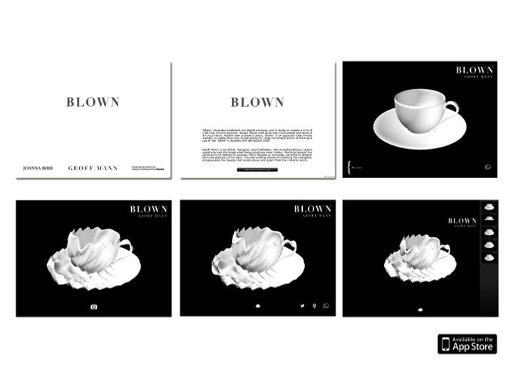 BLOWN APP.jpg