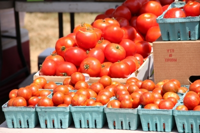Containers of tomatoes at farm stand