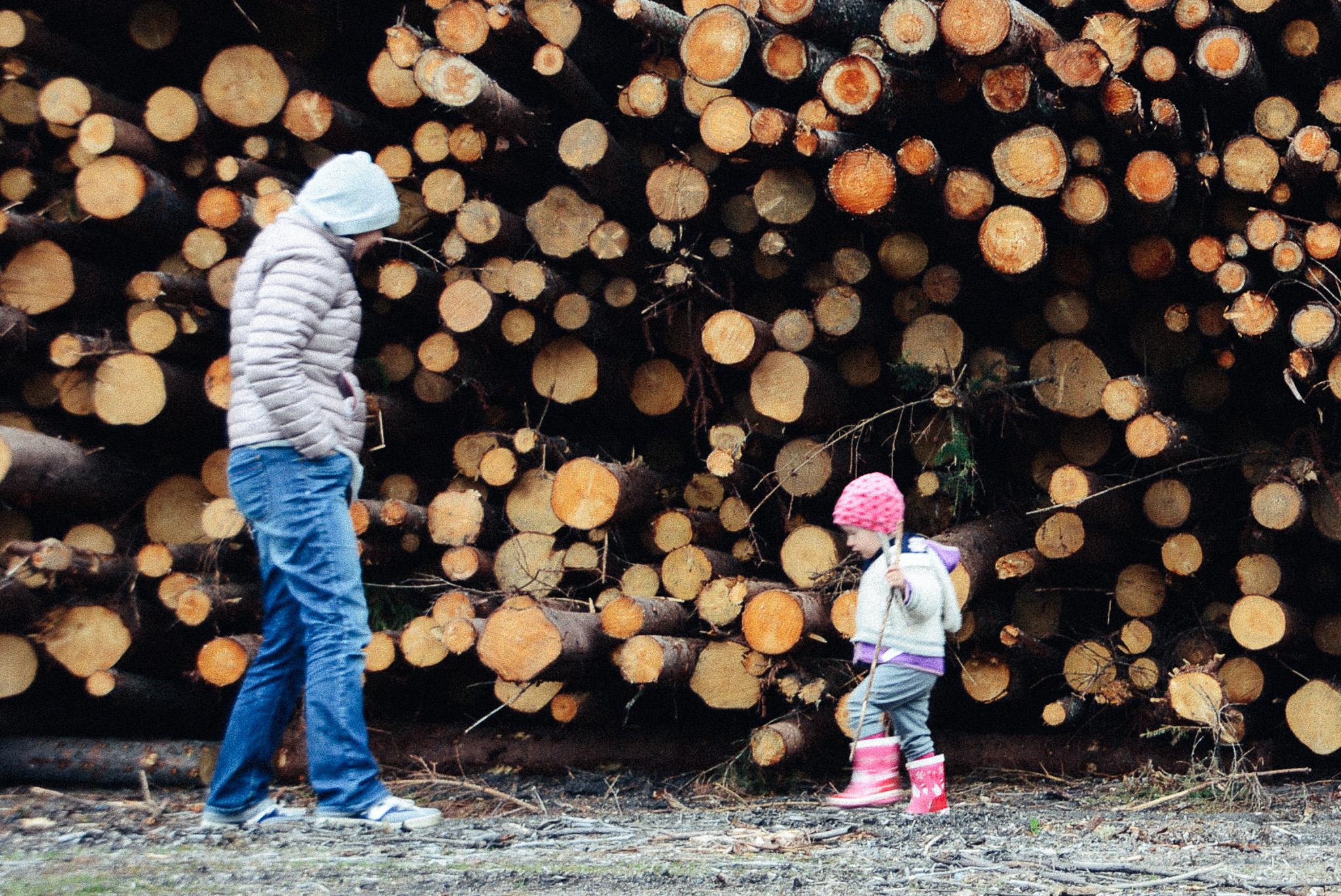 06-09-wood piles-12_LR edited_FB.jpg