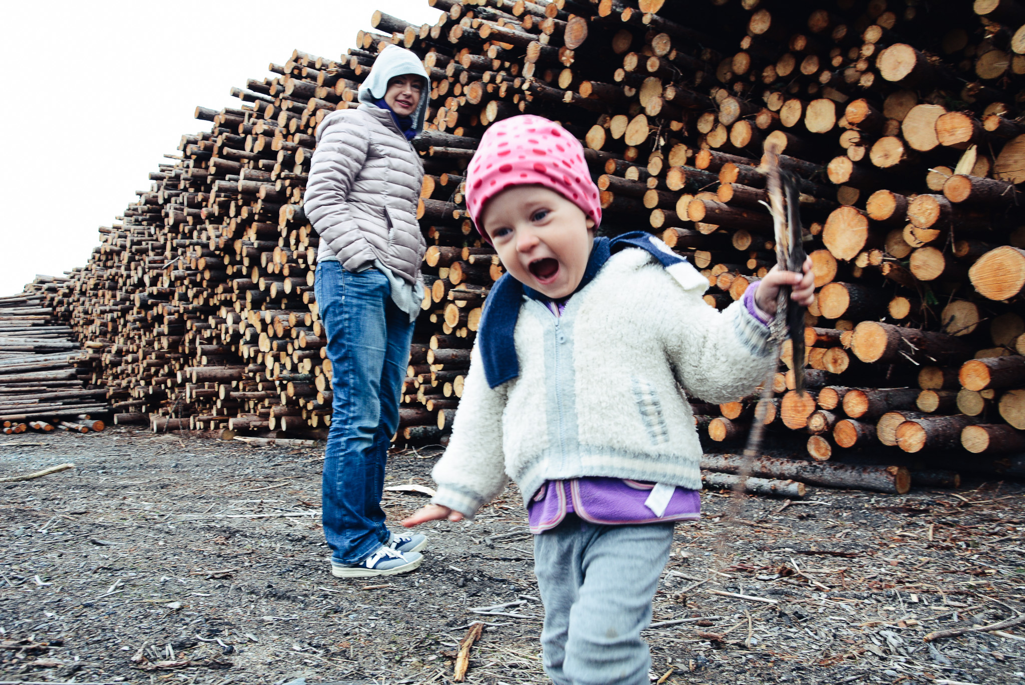 06-09-wood piles-13_LR edited_FB.jpg