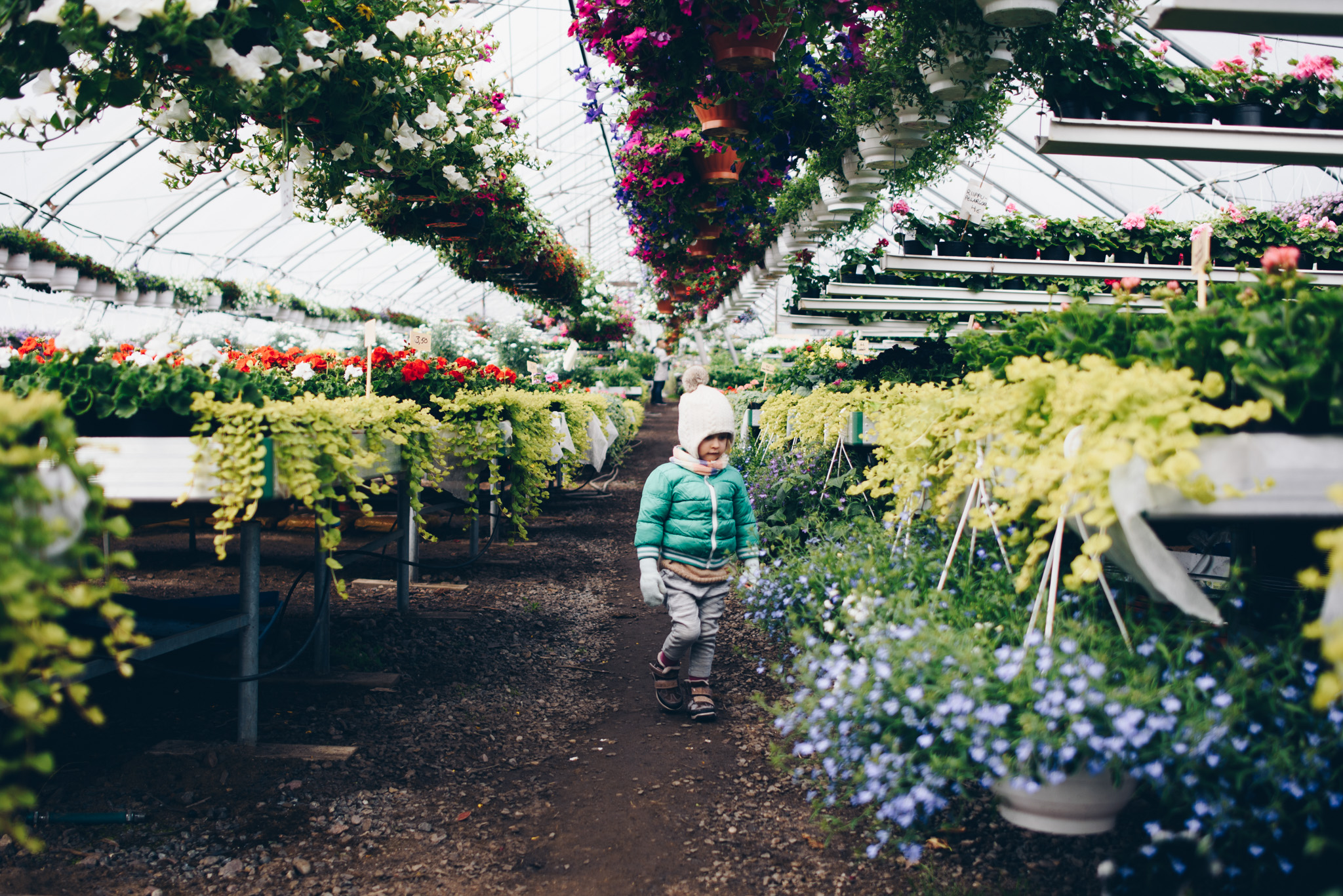 Child at the flowers market