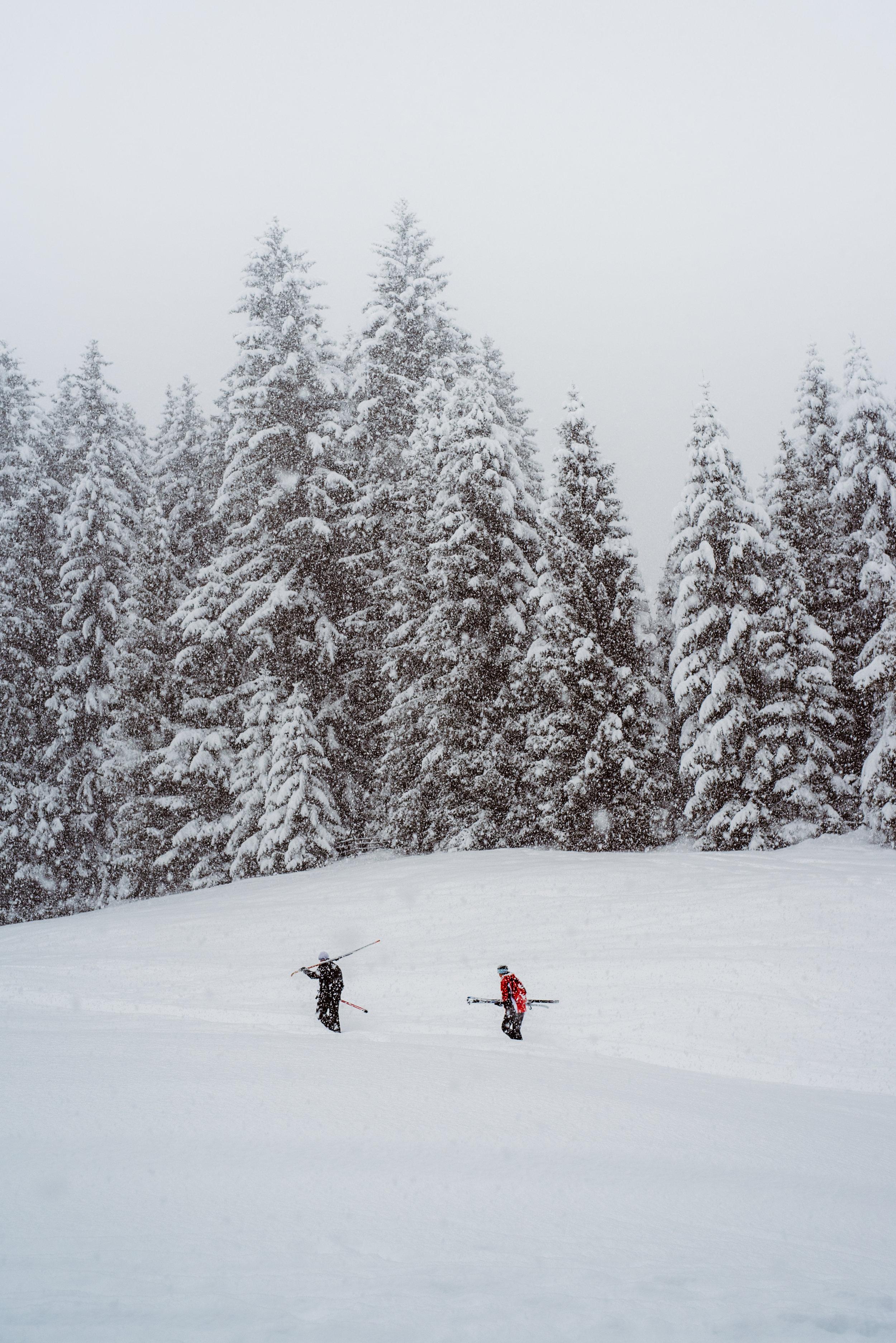 2018-01-04-snowstorm-Tanya-Hochmoor-43_LR edited_Offset.jpg