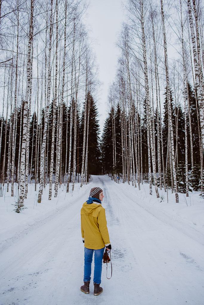 2018-02-25 - drivingonfrozenlake - trees - yellow -56_LR edited_web.jpg