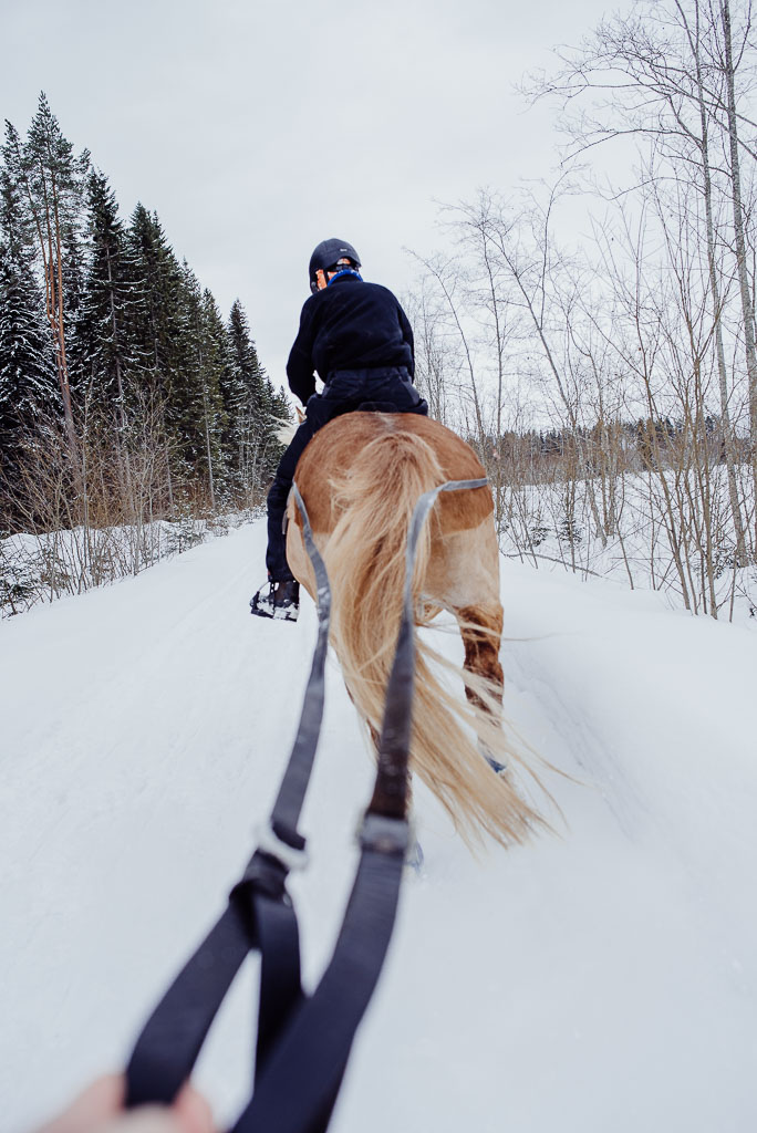 2018-03-24-horse-skiing-26_LR edited_web.jpg