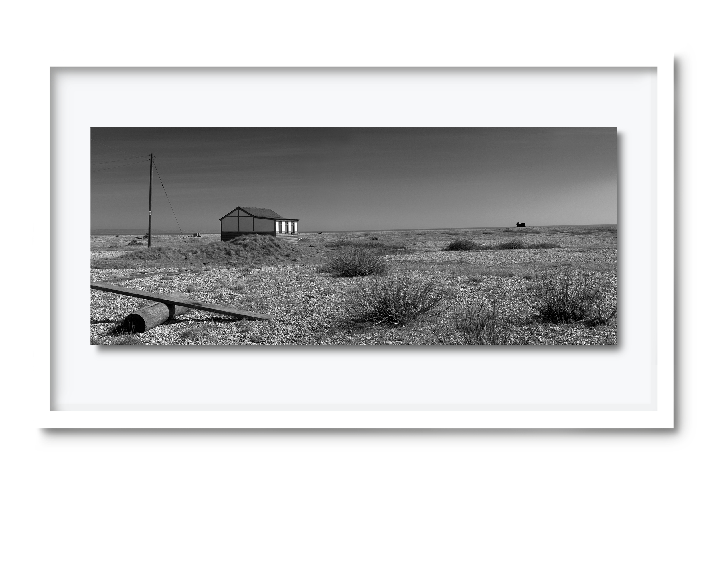 31c.david-pearce-dungeness.png