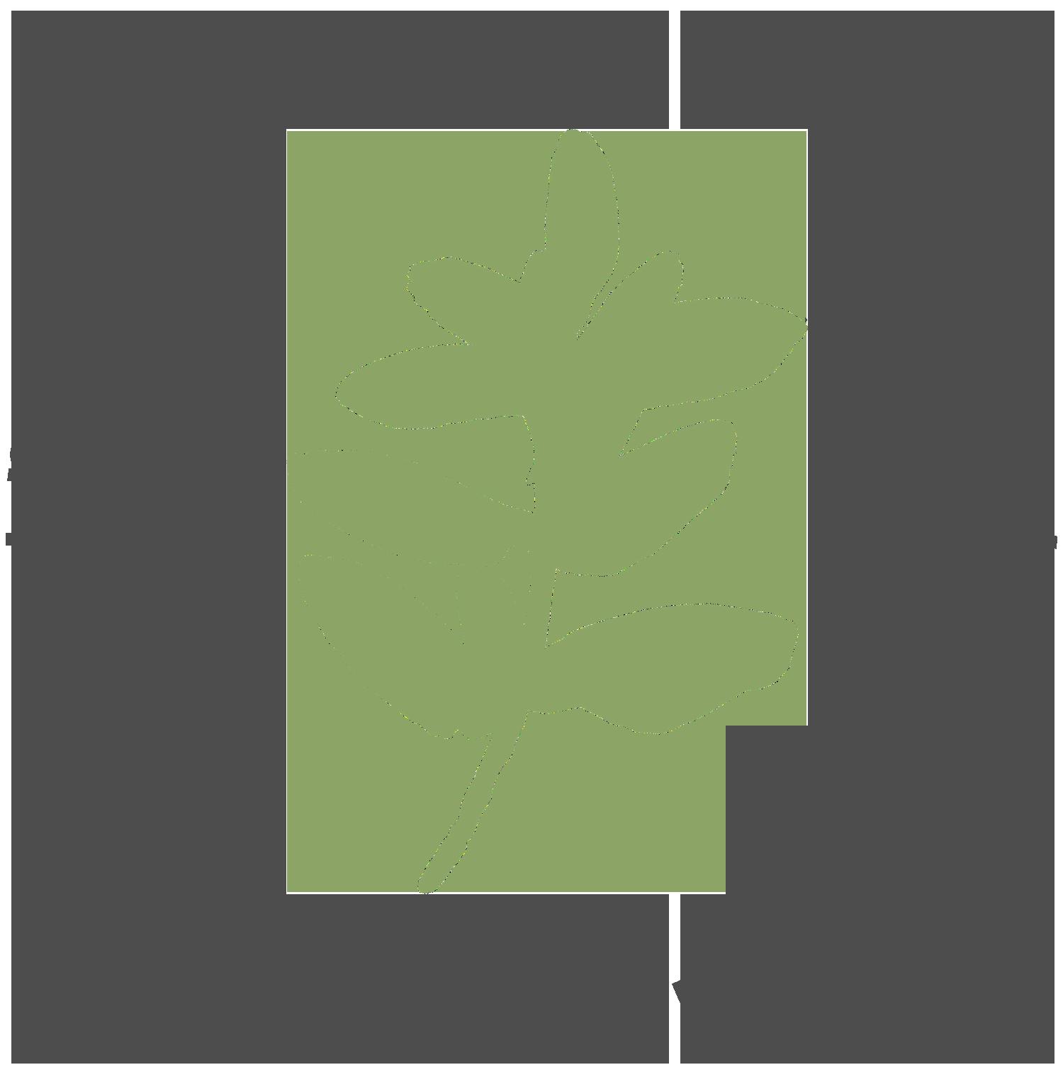 TAM-Logo_2-Color.png