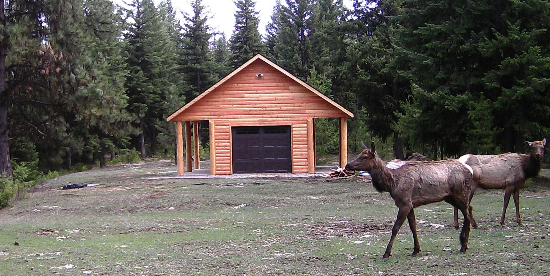 2016-04-12 - 2 Elk at SR2.0 Shed
