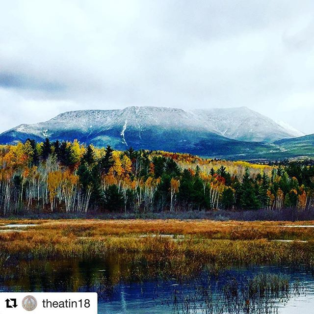 Wow ... been following my long time friend @theatin18 and watching his journey hiking the Appalachian Trail for months. Some unbelievable pictures and this one was to good not to repost. I love the sense of adventure buddy. #relentless #hiking #repost #jealous #outdoors