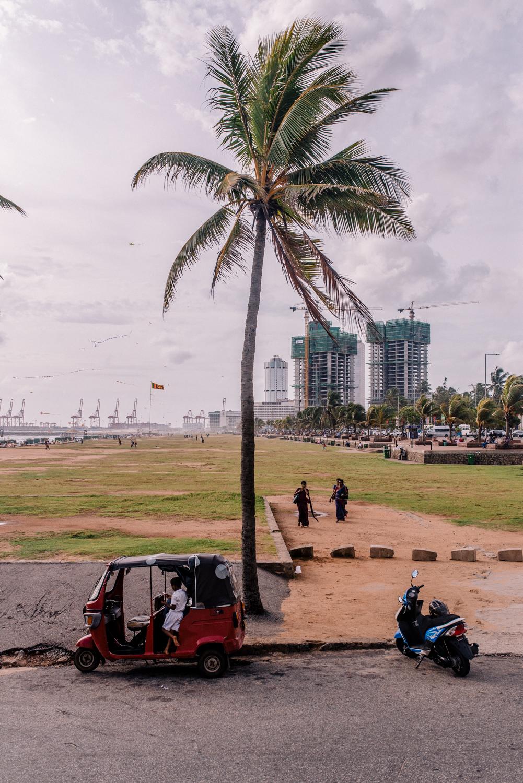AA_0616_Colombo-17.jpg