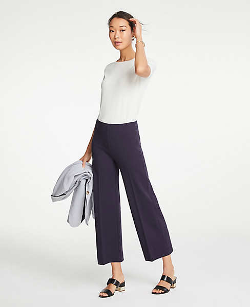 Ann Taylor Cropped Pants.jpeg