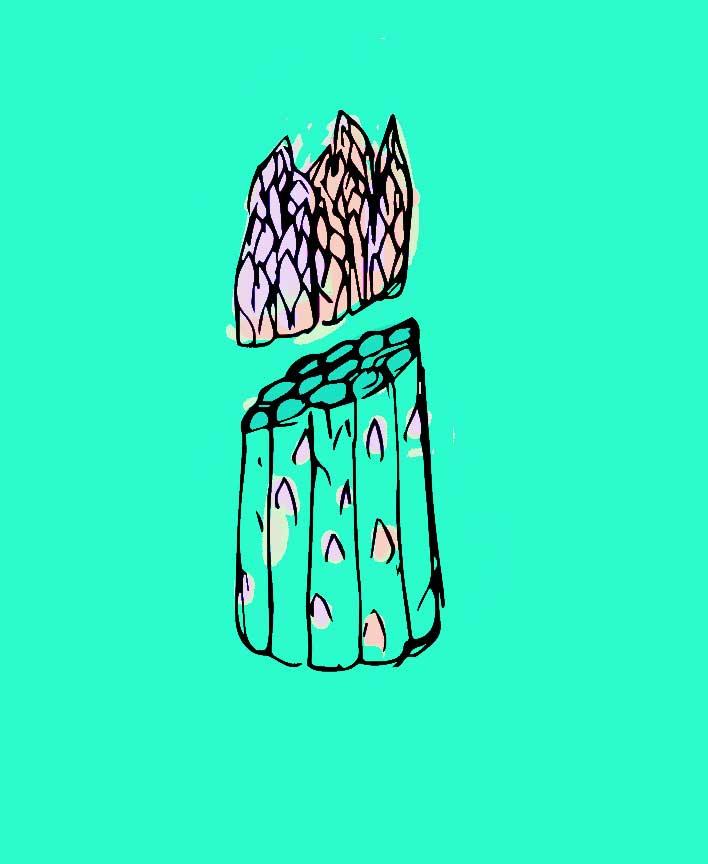 asparagus7.jpg