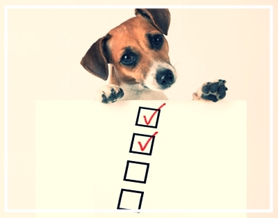 checklist-for-dogs.jpg
