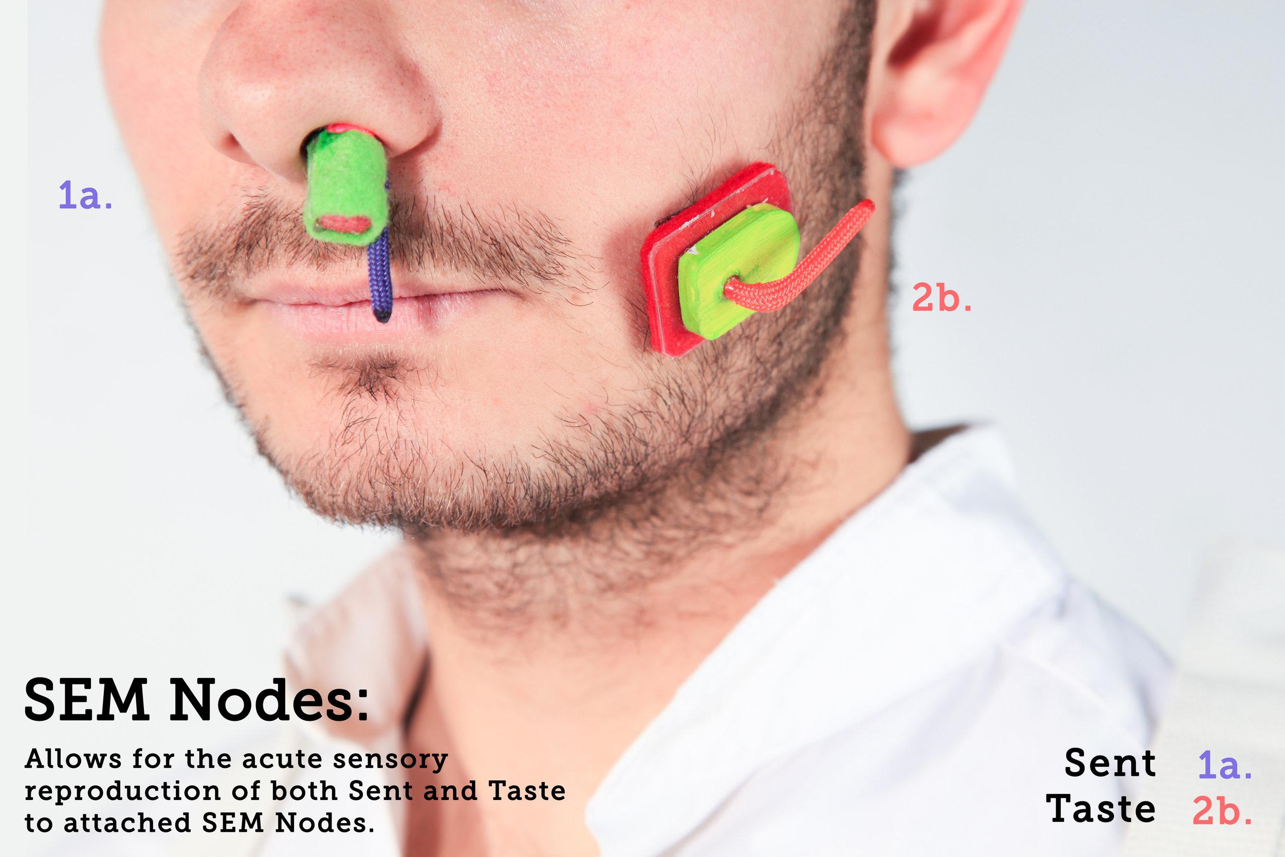 Face_Nodes_Snt_Tast.jpg