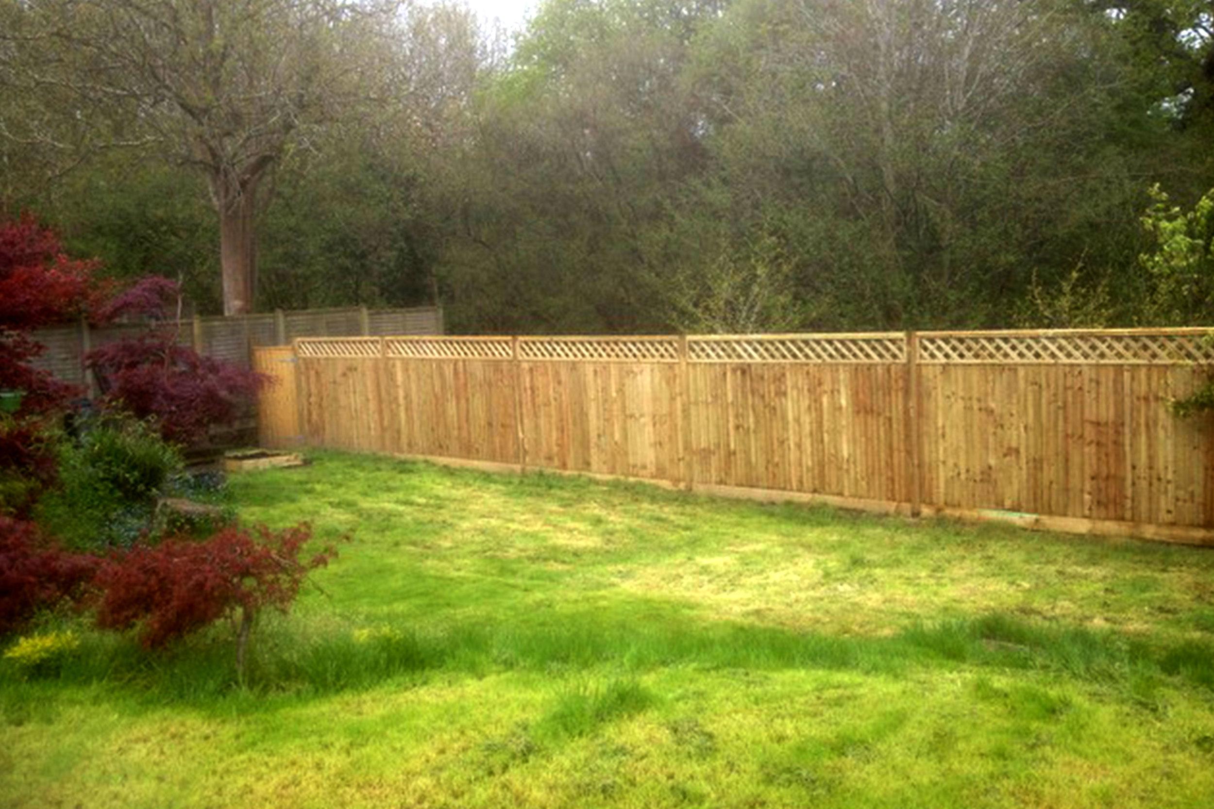 Fence_3.jpg