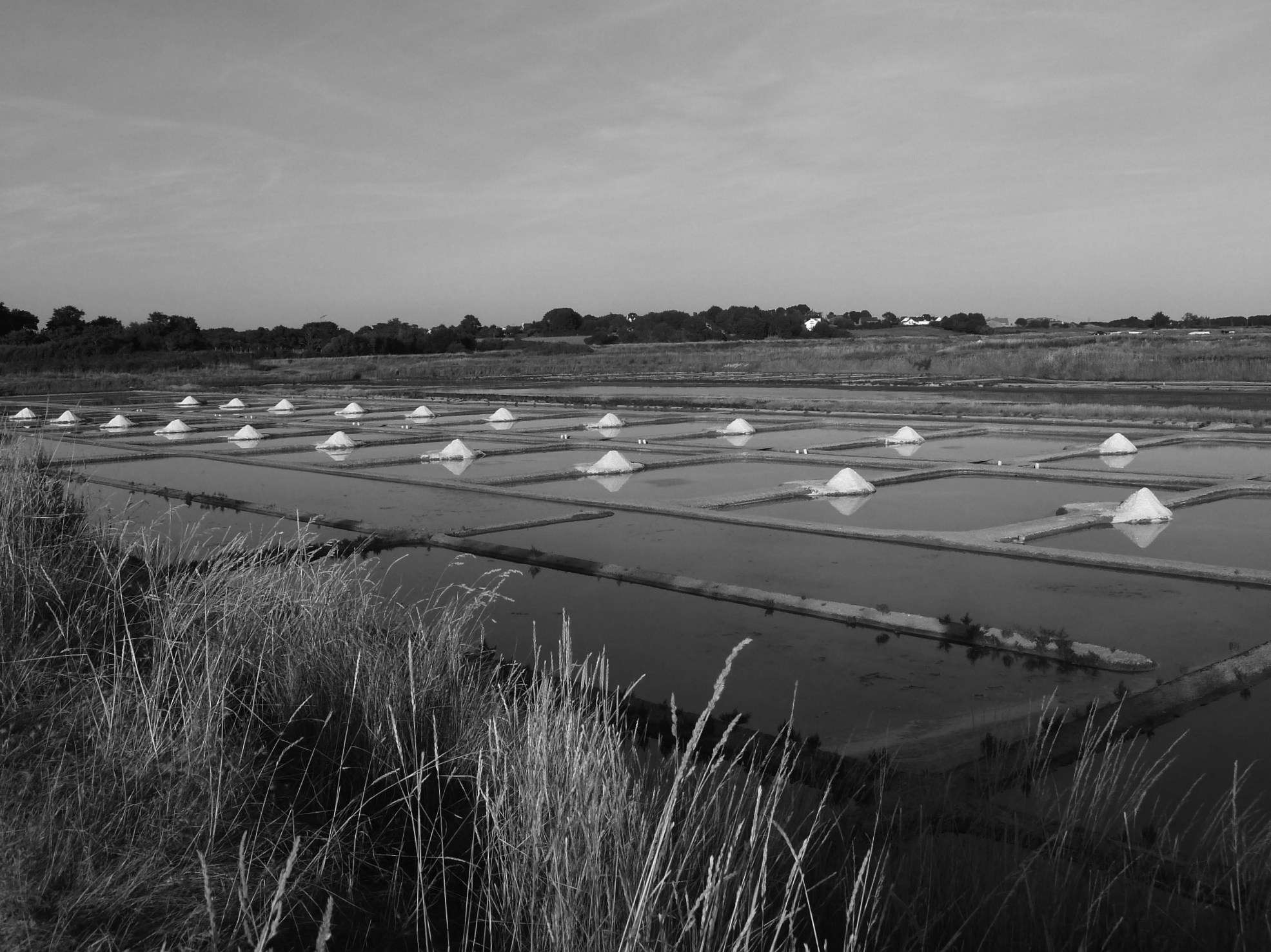 Guerande Sea Salt Marsh