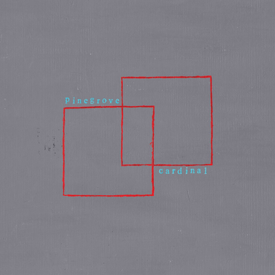 indie-music-and-television-blog-pinegrove-cardinal-album-cover