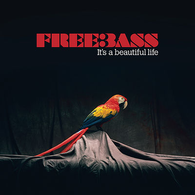 indie-music-and-television-blog-freebass-album-cover