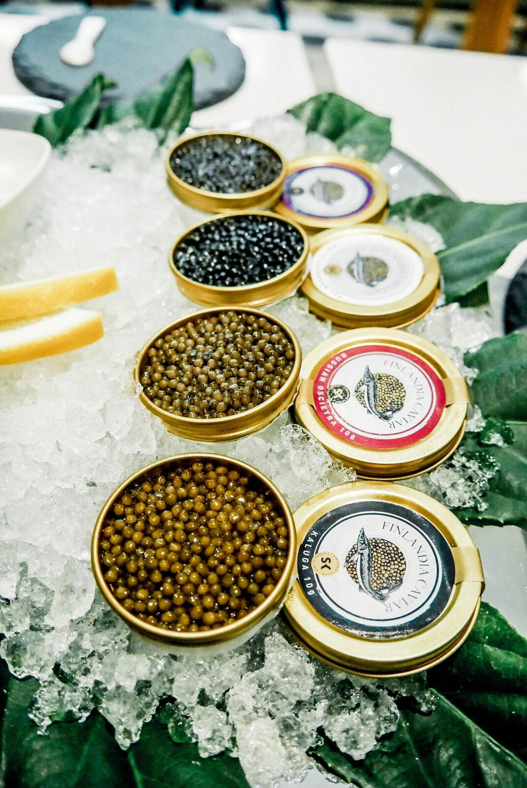 caviar (159 of 276)-1.jpg
