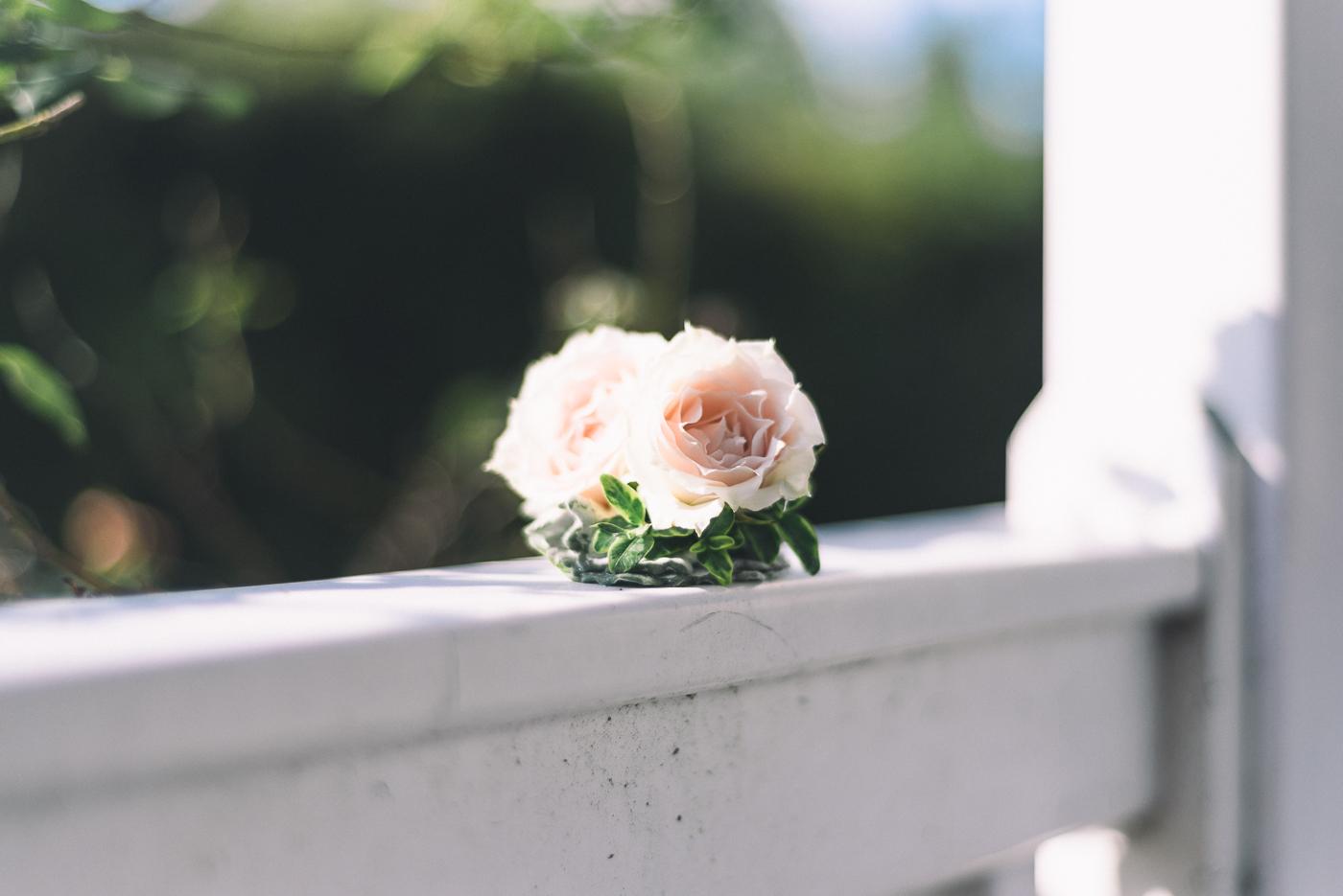 boutonniere pink rose gazebo sunlight