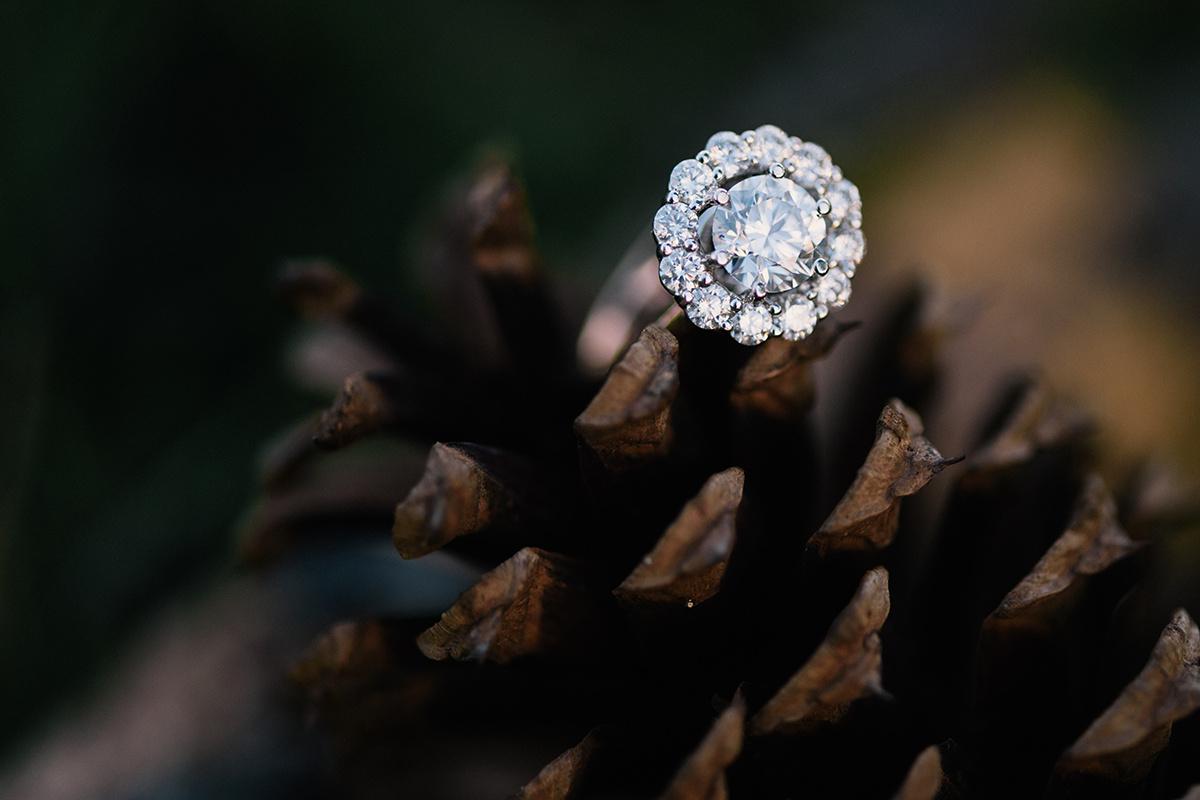 Bennett Brown Photography Diamond ring halo setting pine cone