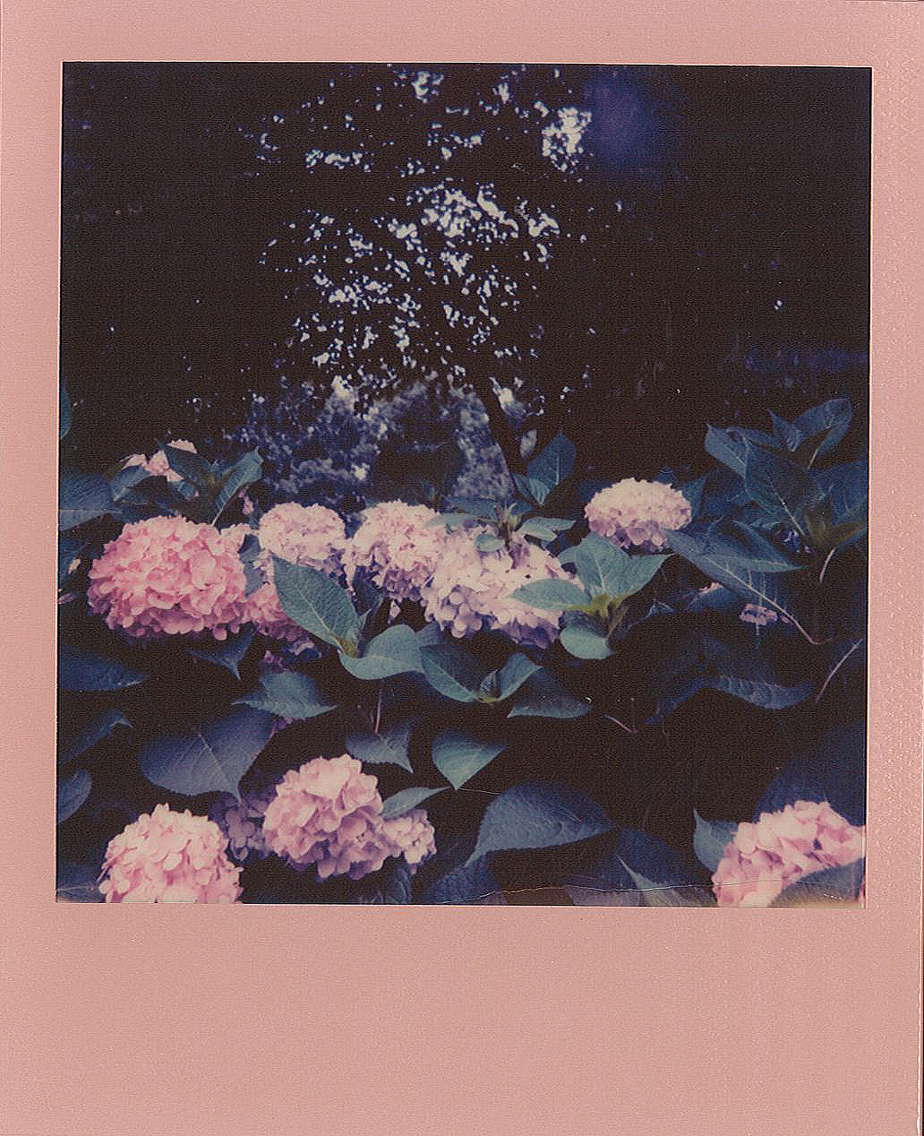 Polaroid I-type