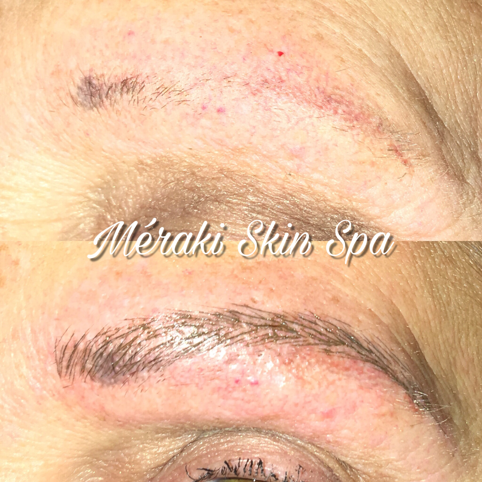 ALT TEXT Permanent Cosmetics - Permanent Eyebrows - Permanent Makeup - Microblading- meridian idaho