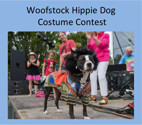 Hippie Dog Costume Contest