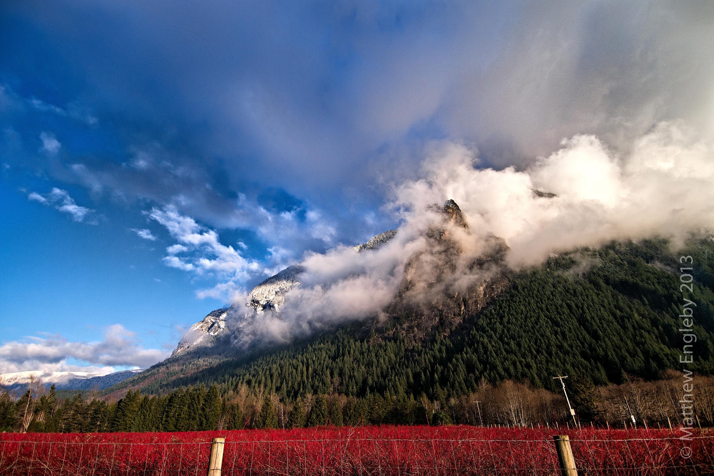 Landscape west of Seattle, Washington.