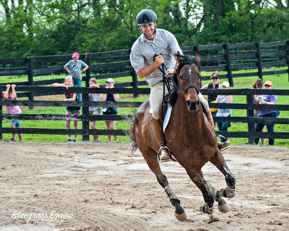 Photo credit to Bluegrass Equine Photography