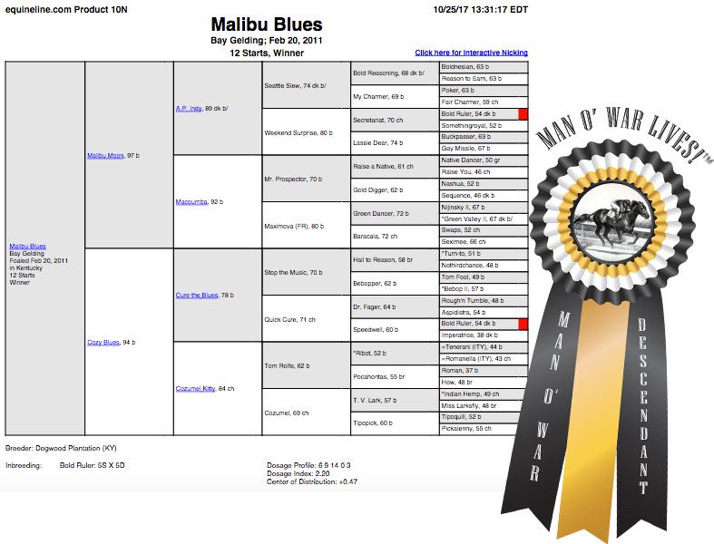 Malibu Blues Man o War TM.jpg