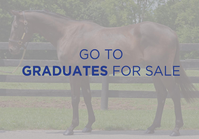 See Graduates for Sale.jpg