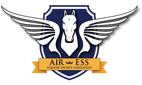 Air-Ess.jpg