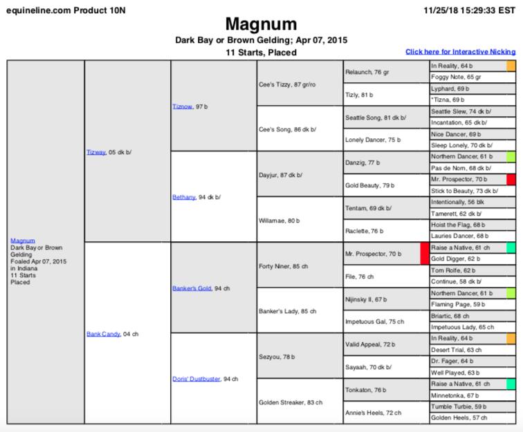 Magnum.png