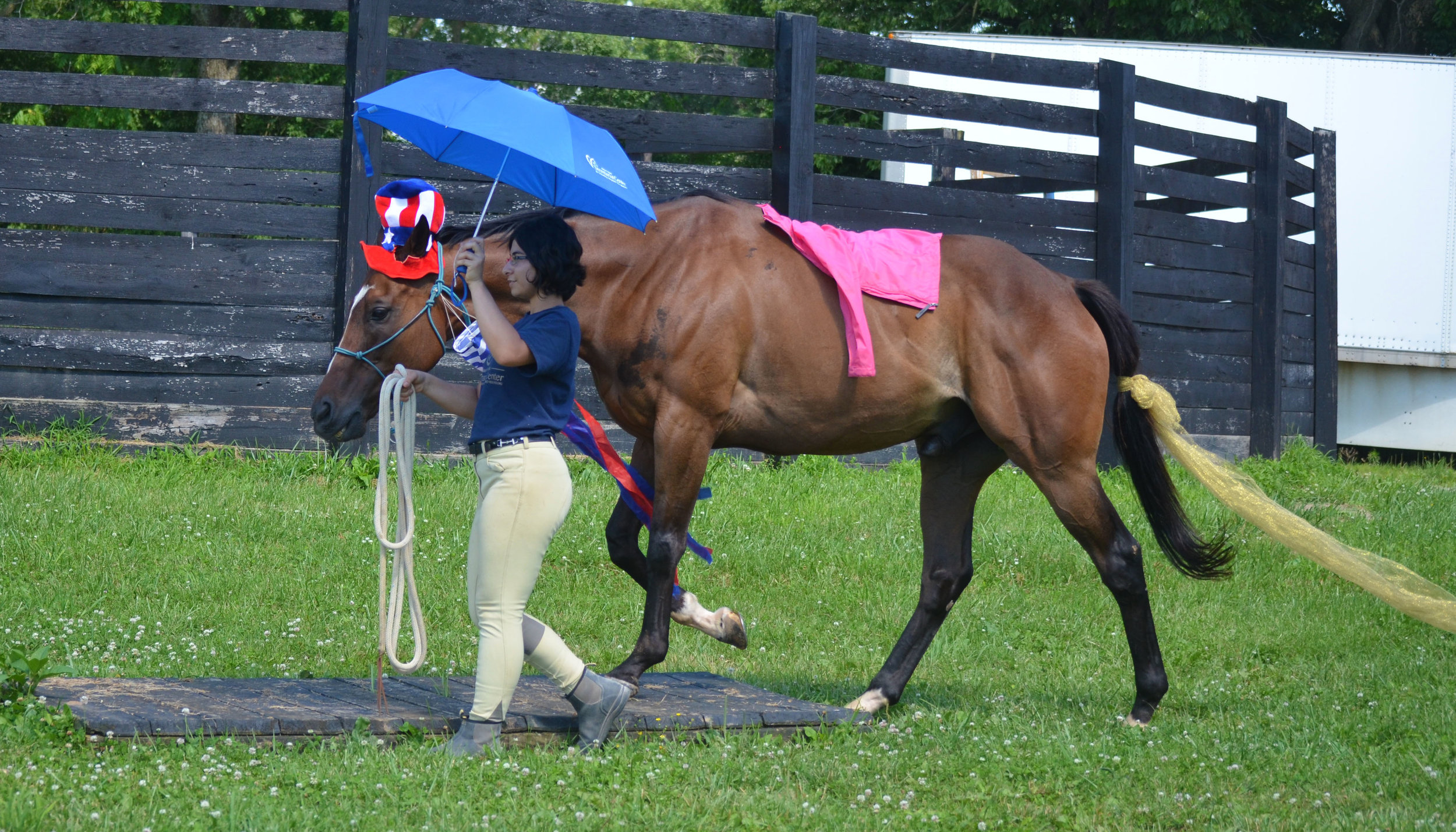 """Tower working over the MMSC obstacle course with intern Emily, in the """"bombproofing"""" phase of his reschooling."""