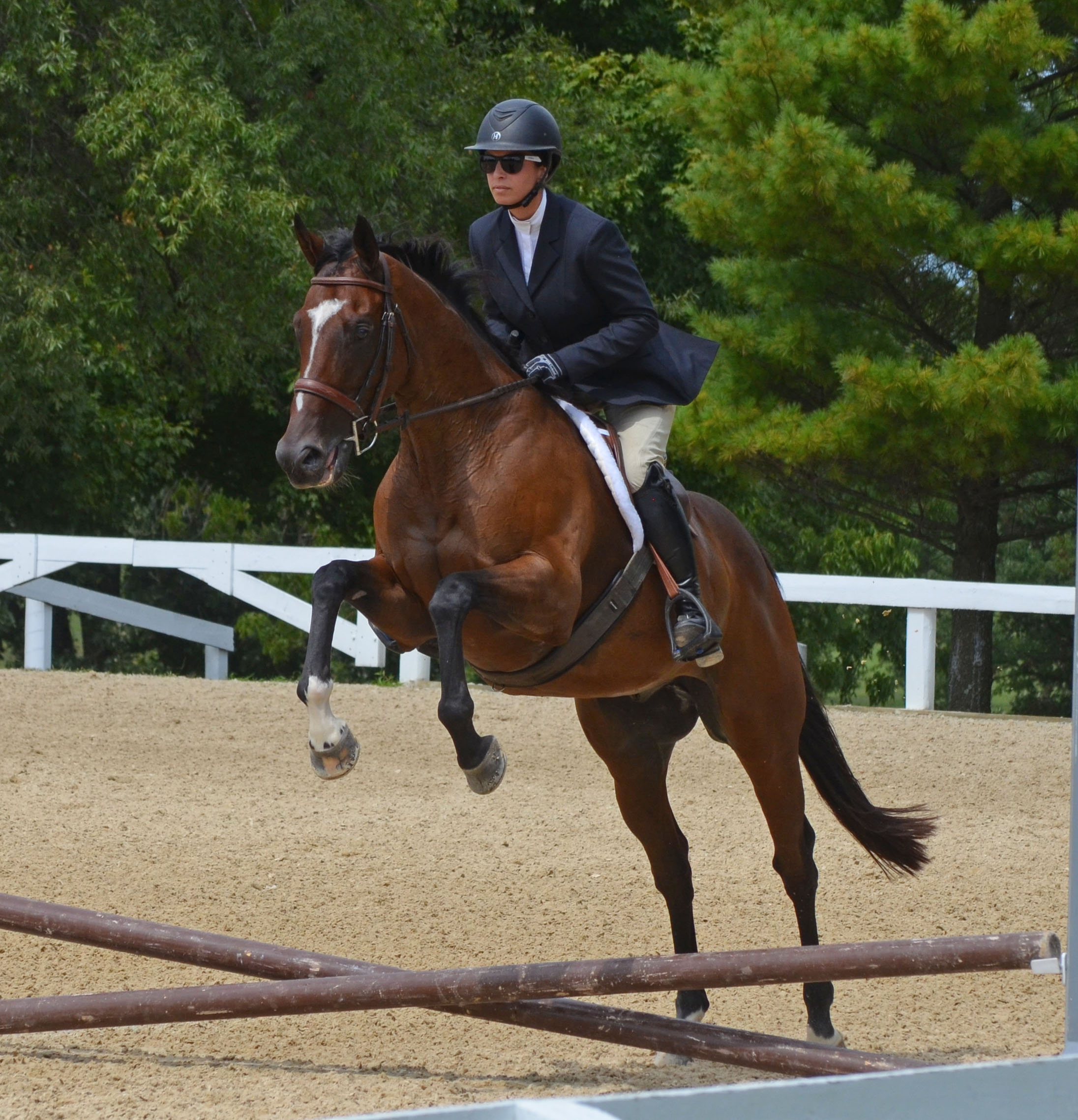 Tower of Texas in the New Vocations All-Thoroughbred Charity Show