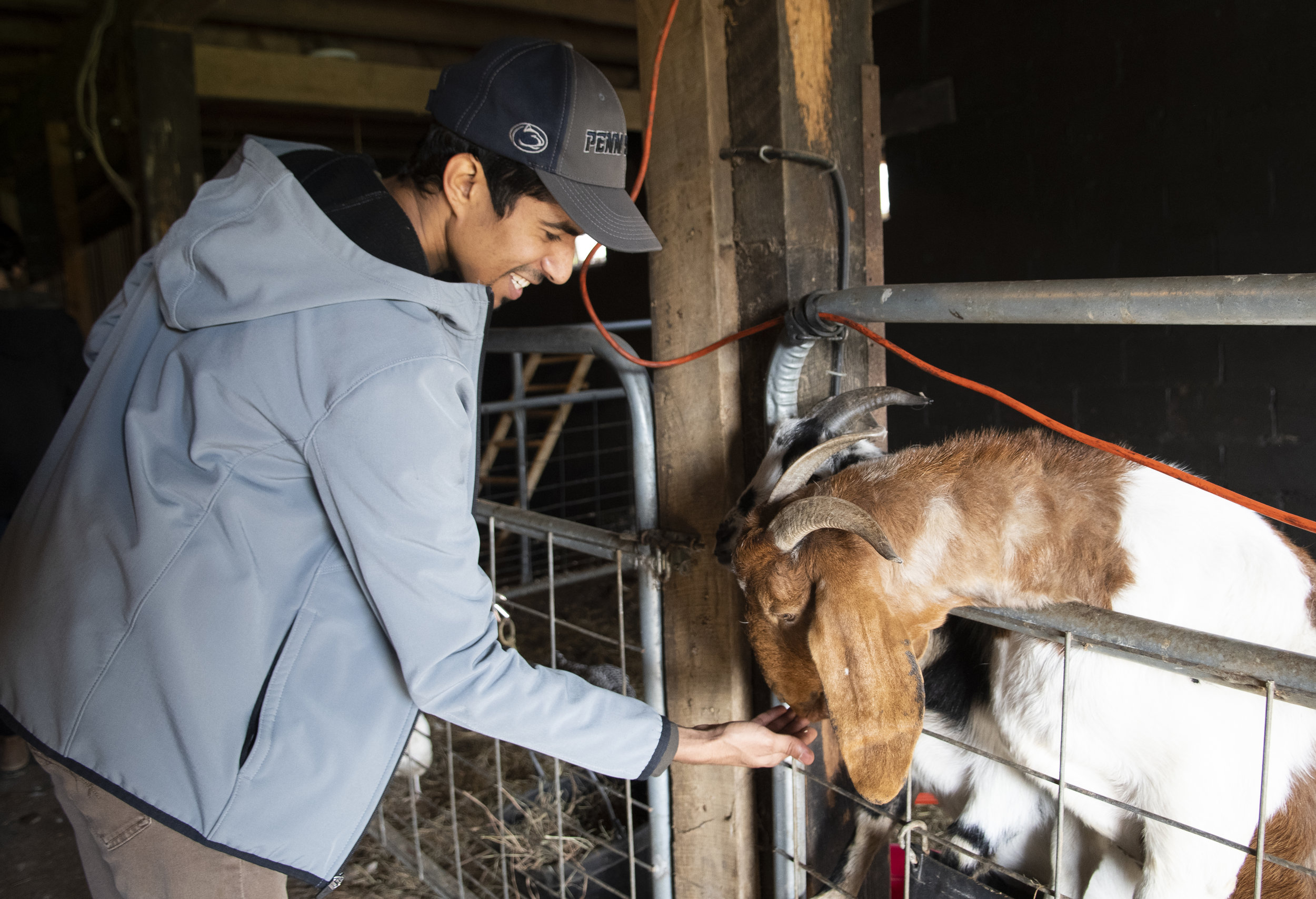 Sulaiman AlAghbari (junior-communication arts and science) feeds a goat during the Crop Mob event at The Barn on Valley View Road in Bellefonte on Nov. 3, 2018. | Photo by: Noah Riffe