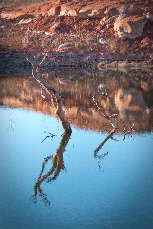 Riverbed_TreesSunset1web.jpg
