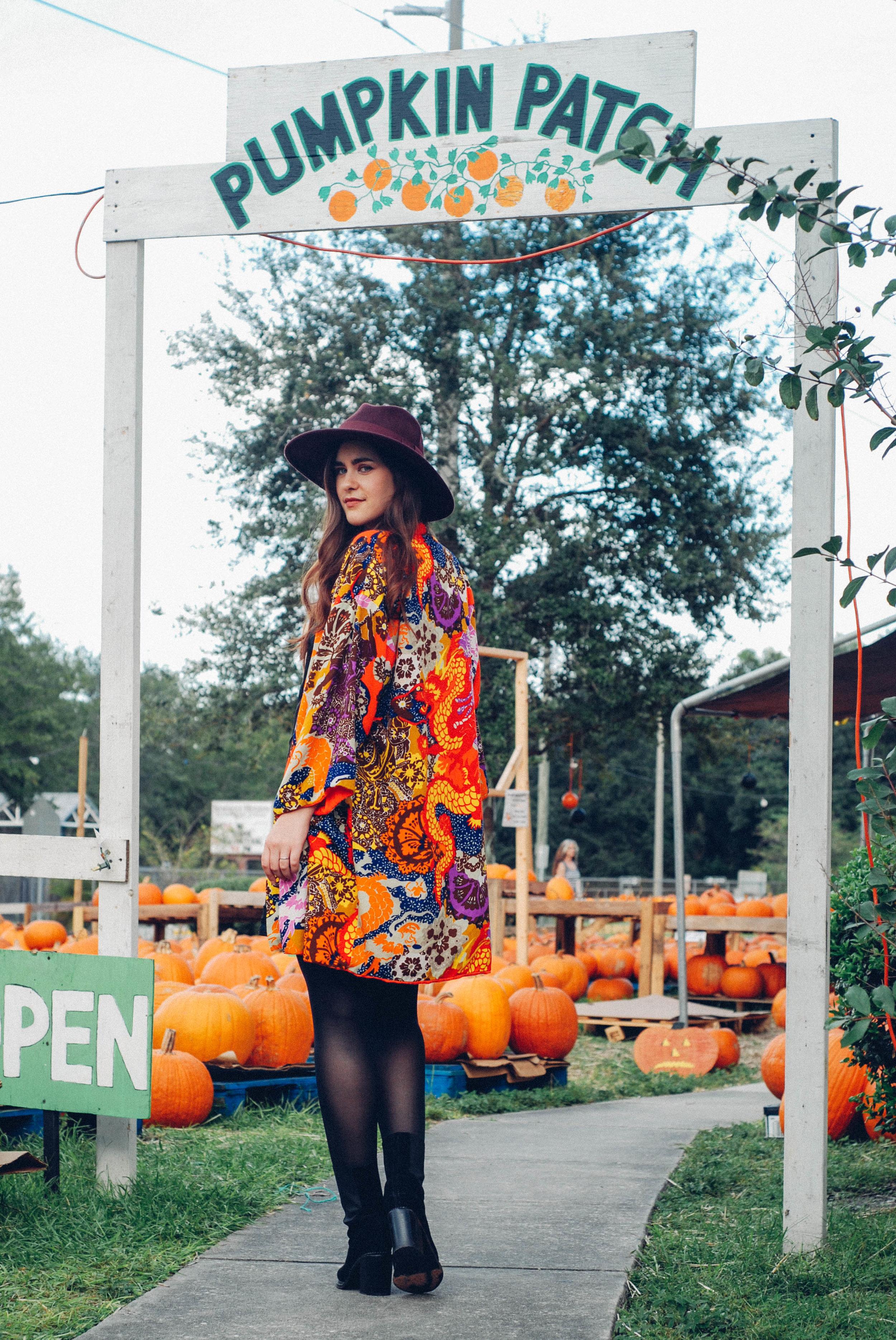 pumpkinpatch-4.jpg