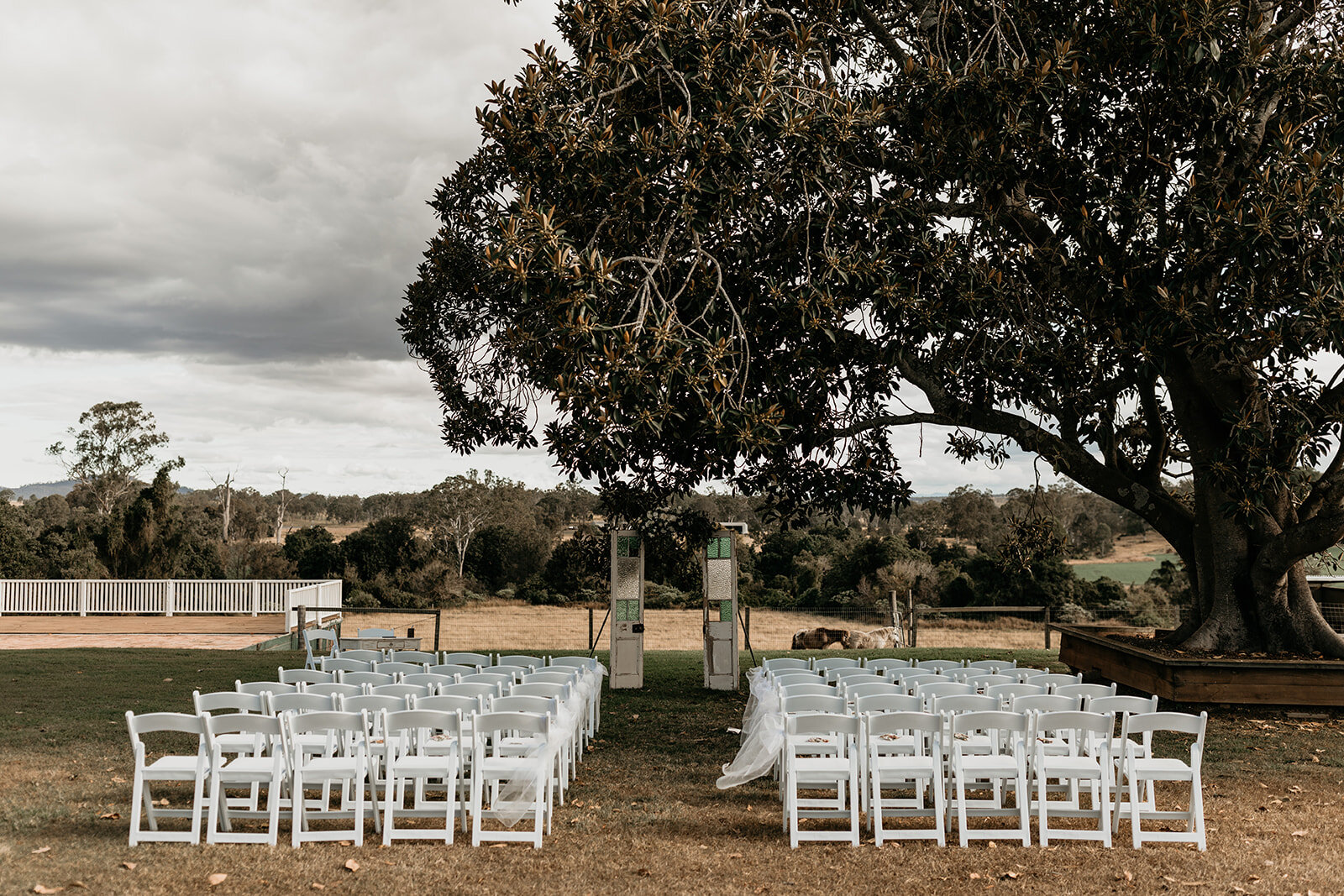 Albert River Wines - The glorious setting with its sweeping drive, the colonnaded veranda and undulating hills covered with vines will provide an immaculate setting for what is sure to be an unforgettable day.