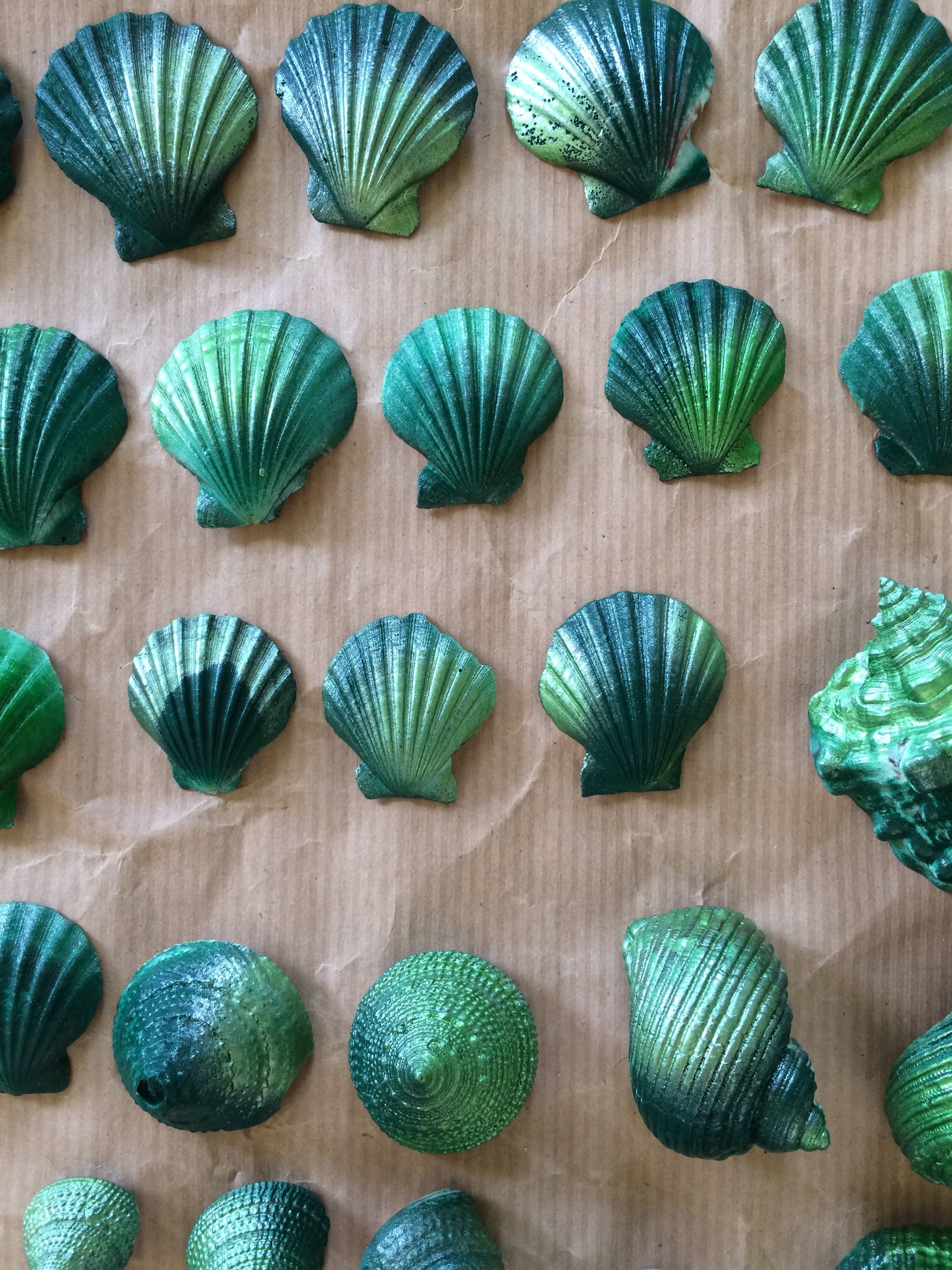 Spray painted shells in two shades of green
