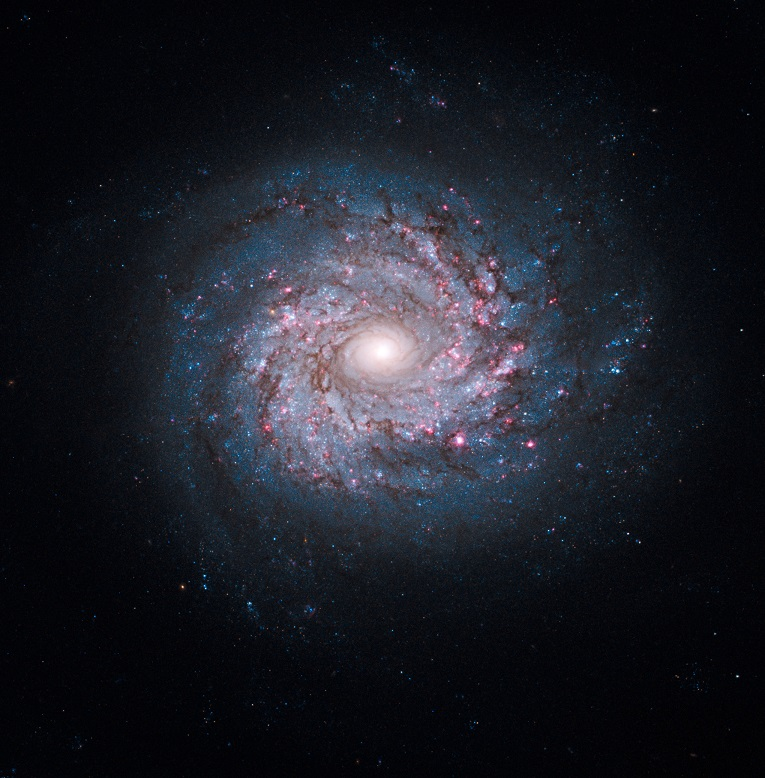 BigData_Astronomy_galaxy.jpg