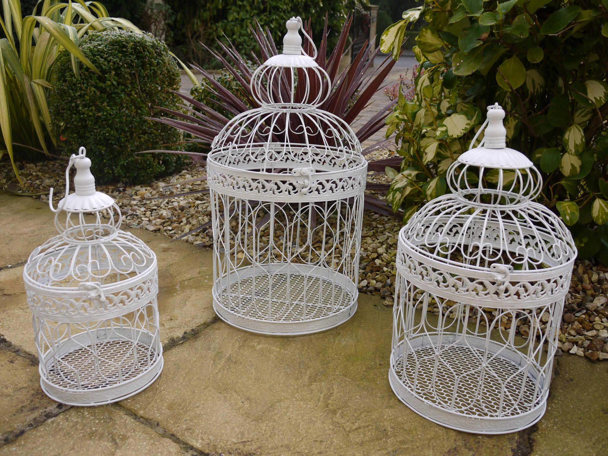 bird cage 2.jpg